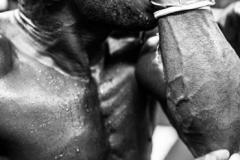 CLang_portraits-boxer
