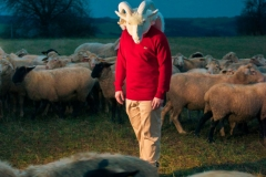 DCVDNS Wolf im Schafspelz